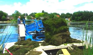 Eco Cutter - Aquatic Weed Harvester Dumping Demo