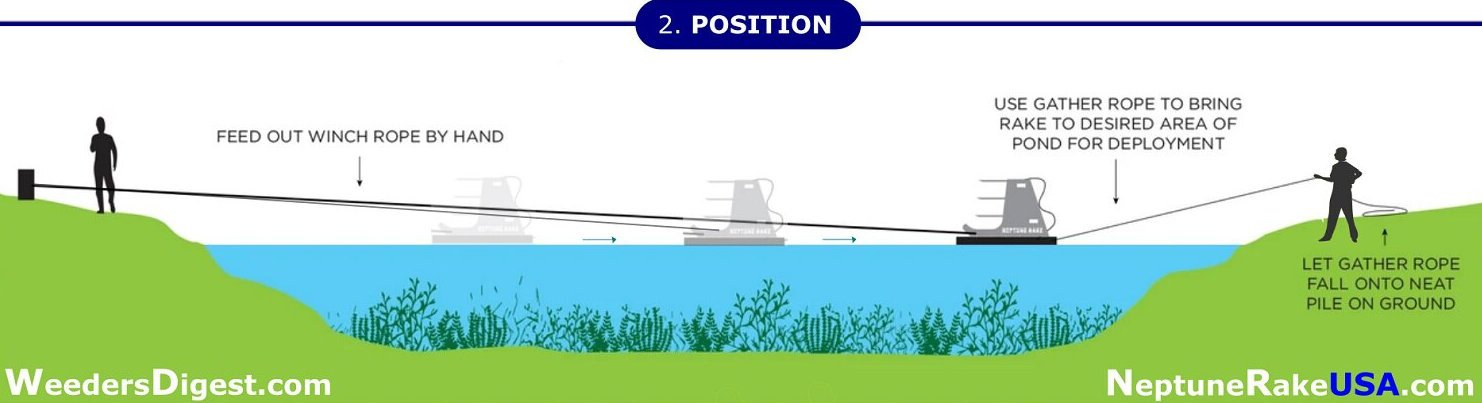 Neptune Position