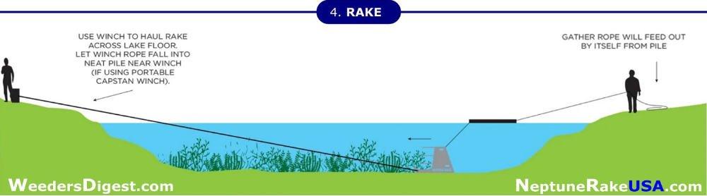 Neptune Rake Step